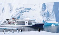 Hanseatic Spirit vor Eisbergen und hinter Pinguinen